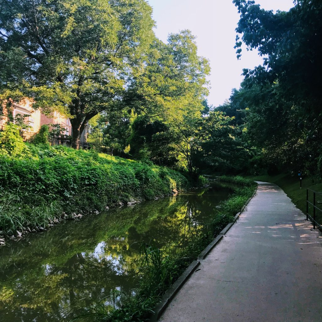 the charlotte greenway is one of top free things to do in charlotte